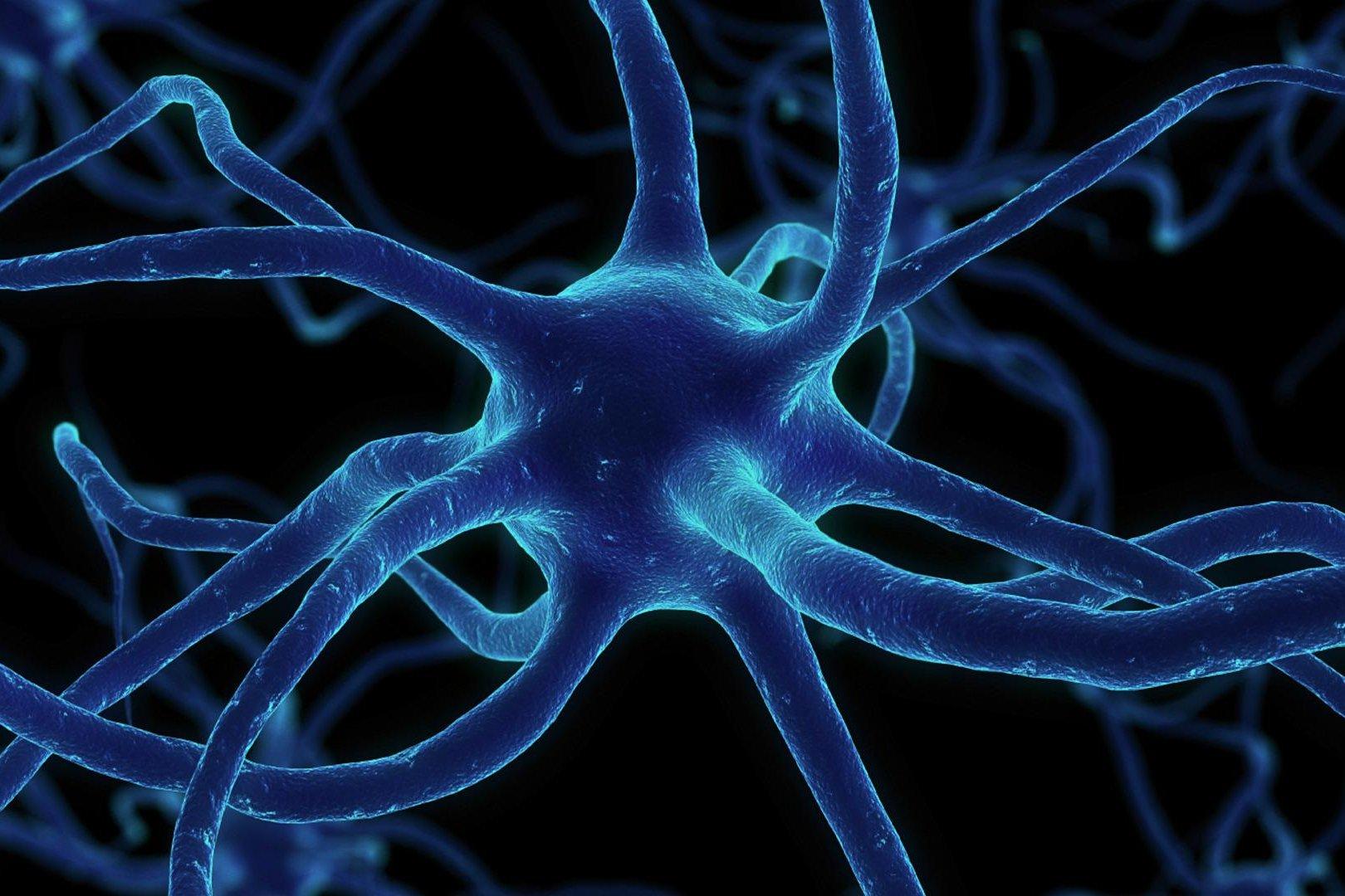 3D печать нервов