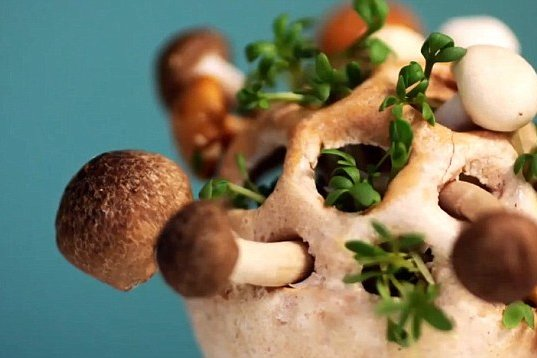 3D печать еда