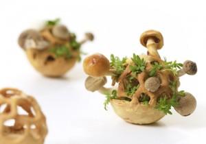 3D печать еда - 3D печать еды - будущее здорового питания
