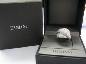 3Ddamiani1