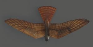 3Drobird8