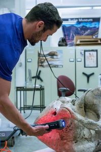 3D сканирование части скелета мамонта