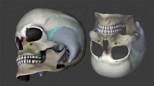 3D биопечать