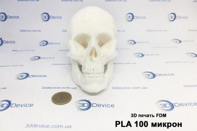Печать черепа из PLA пластика