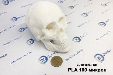 Печать черепа из ПЛА
