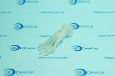 3D макет костей стопы, напечатанный на 3D принтере