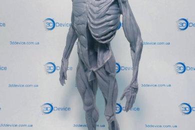 3D печать сложных анатомических моделей