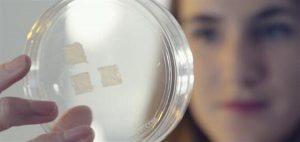 Разработка 3D-печатной кожи