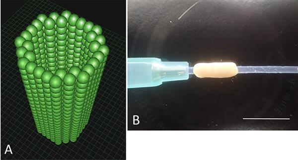 Настоящие нервы на 3D принтере