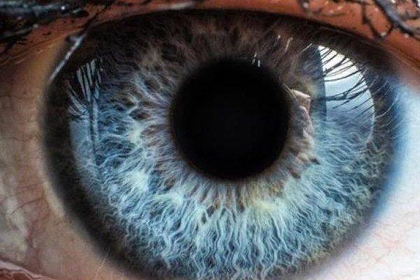 Глаз на 3D принтере 3D печать