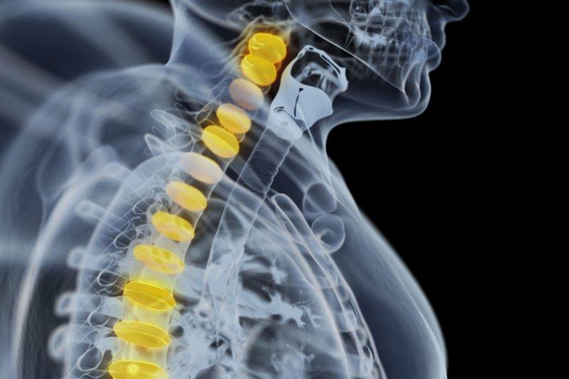 Медицинские 3D модели