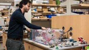 В разработке 3D печатные бинты