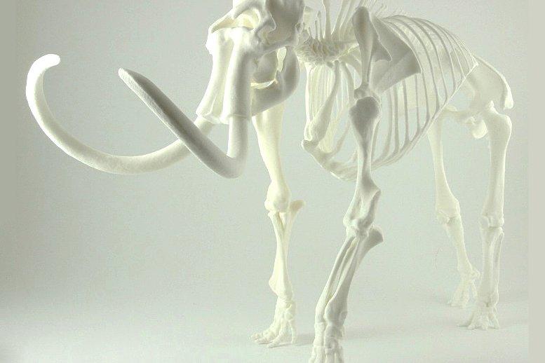 3D печать скелета мамонта