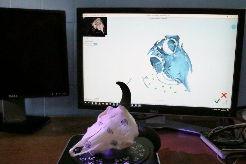 3D сканирование сложных объектов